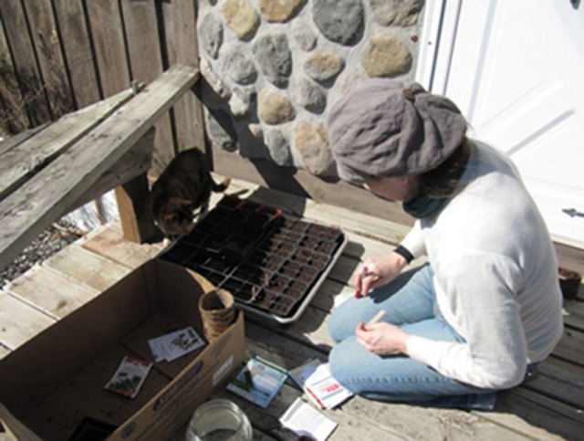 Seed Starting With My Trusty Assistant, Izza Lizza Puss